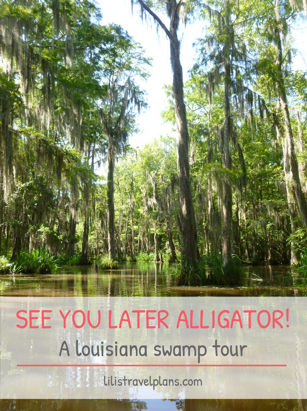 SEE YOU LATER ALLIGATOR! A LOUISIANA SWAMP TOUR